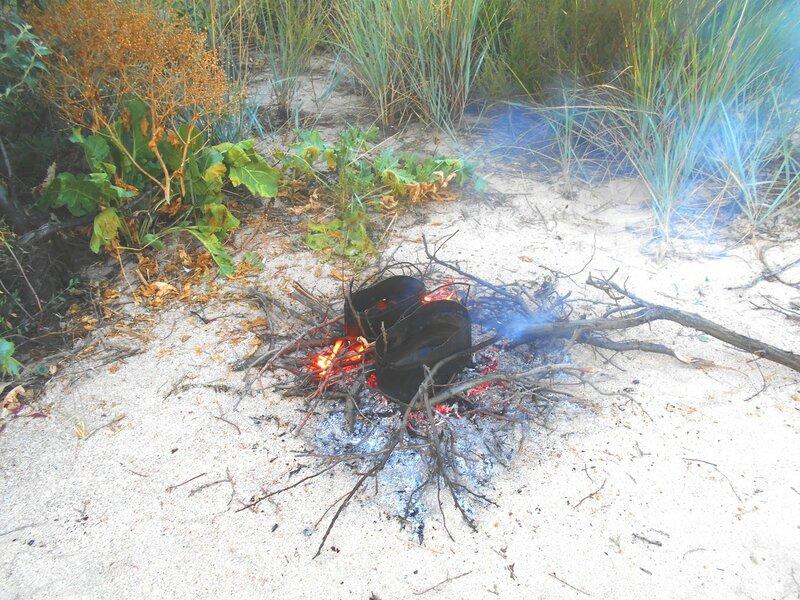 На утреннем огне ... DSCN7443.JPG