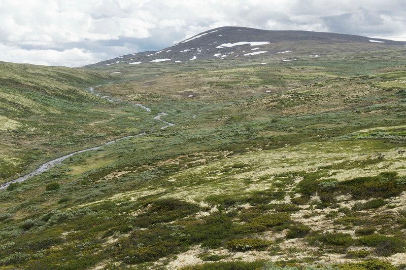 национальный парк Довре (Dovre), тундра, река Gautåe и гора Gråhøe