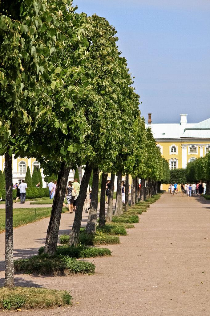http://img-fotki.yandex.ru/get/15/56950011.4b/0_6acba_fd43eba8_XXL.jpg