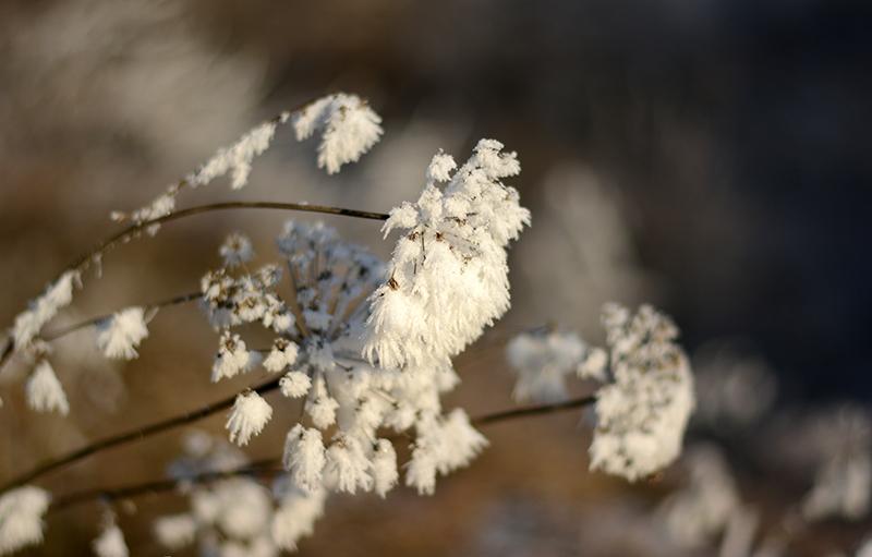 зимнее 15 2