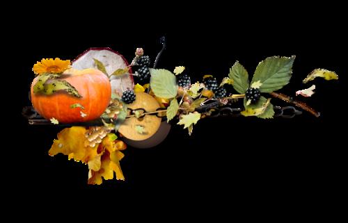 martad_autumnHarvest_cluster (7).png