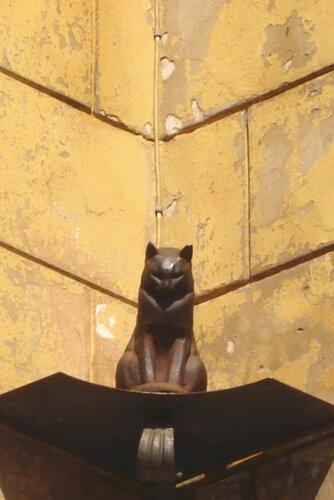 olgaosokina — «Кот Елисей» на Яндекс.Фотках