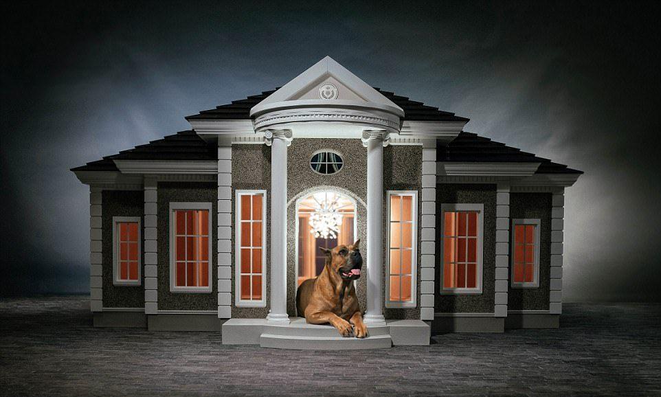 Будки-дворцы для собак, стоимостью до £170 000