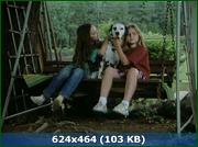 http//img-fotki.yandex.ru/get/150569/170664692./0_159517_2f712863_orig.png