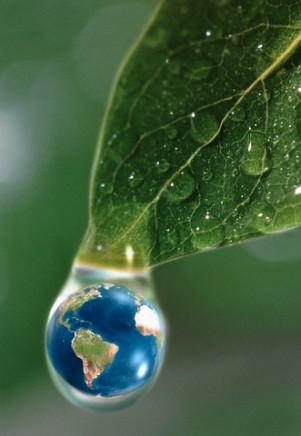 Открытка ко дню эколога