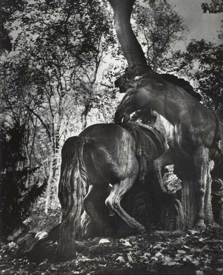 1949. Лошади Аполлона в Версале