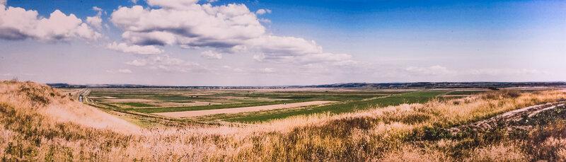 Вид с поселения Стрелка-2 - современное состояние ландшафта