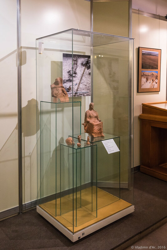 Выставка «Древние эллины между Понтом Эвксинским и Меотидой»
