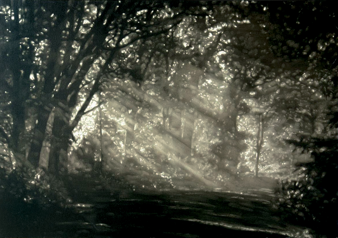 03 Bois d'Automne by Eric Serafini.jpg