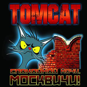 Tomcat_16.jpg