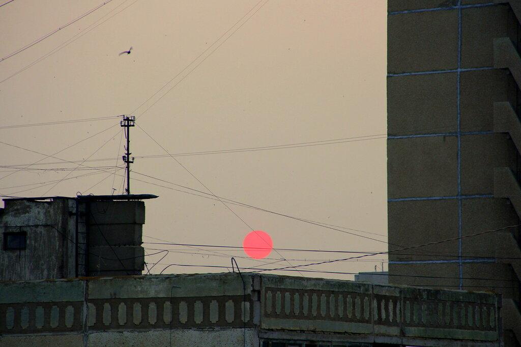 Красное солнце4.JPG