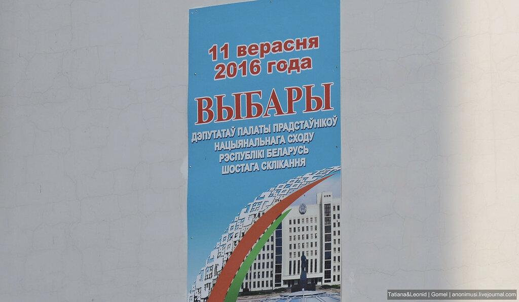 Парламентские выборы. Гомель