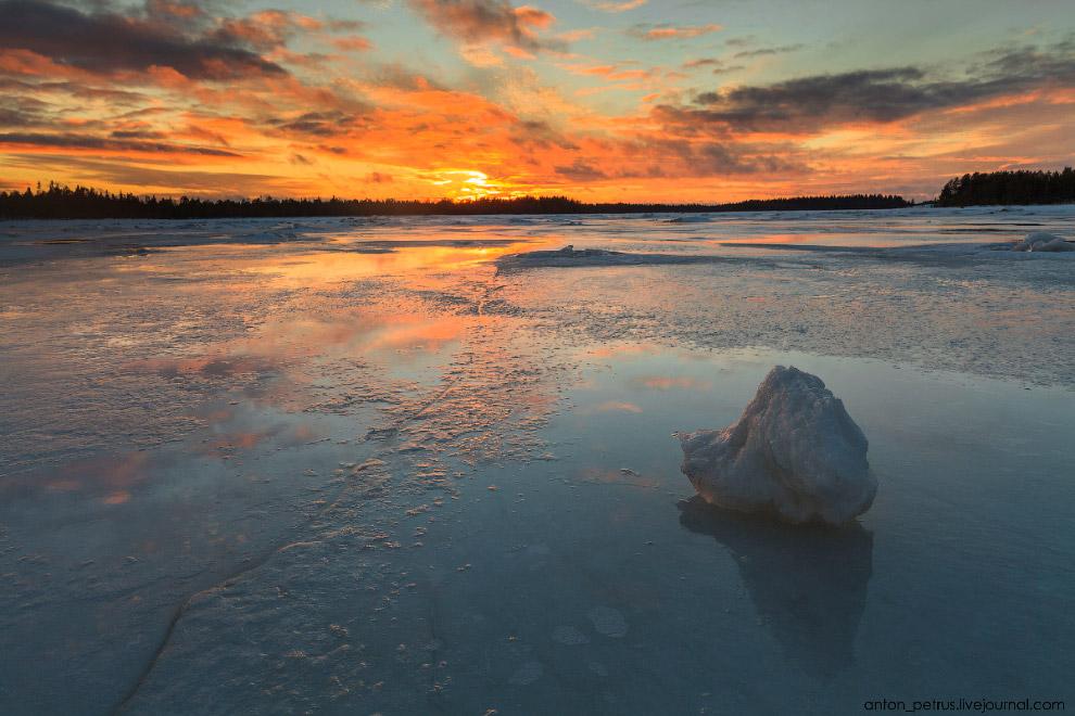 10. А здесь свежий лед начал сковывать лужи. Какое искушение было пройтись по нему и послушать