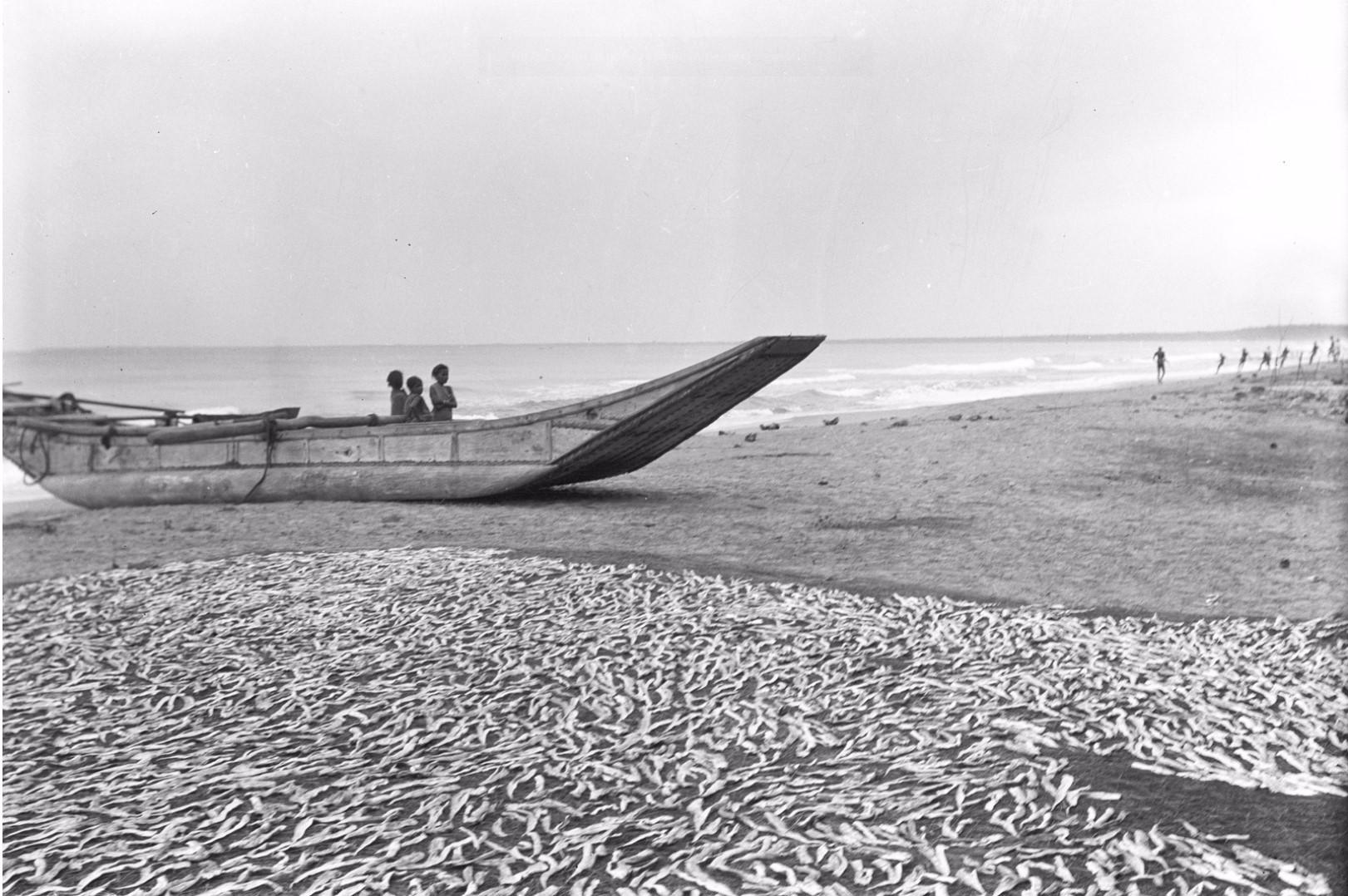 267. Калкуда. Рыбацкая лодка на берегу
