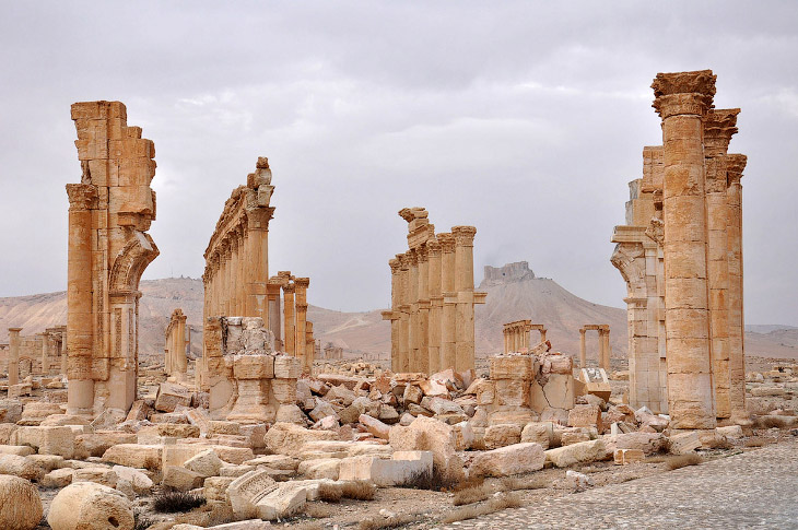 Новое освобождение древней Пальмиры (23 фото)