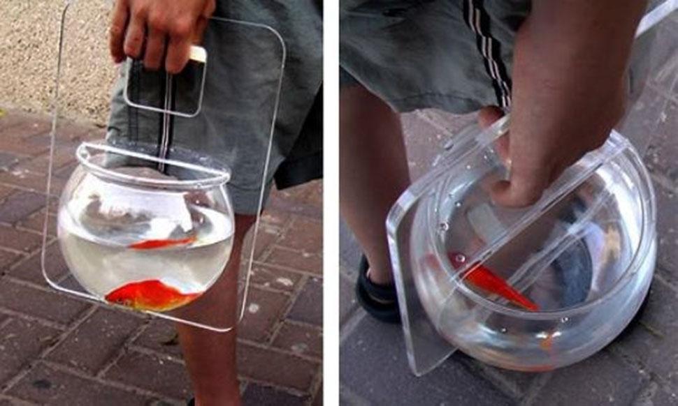 Аквариум для тех, кому показалось, что их рыбка желает прошвырнуться по району.