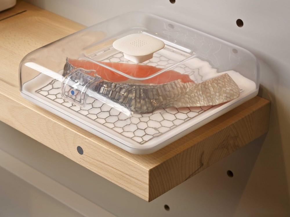 7. Этот кусок рыбы находится внутри контейнера с надписью «2 градуса по Цельсию». Полка будет поддер