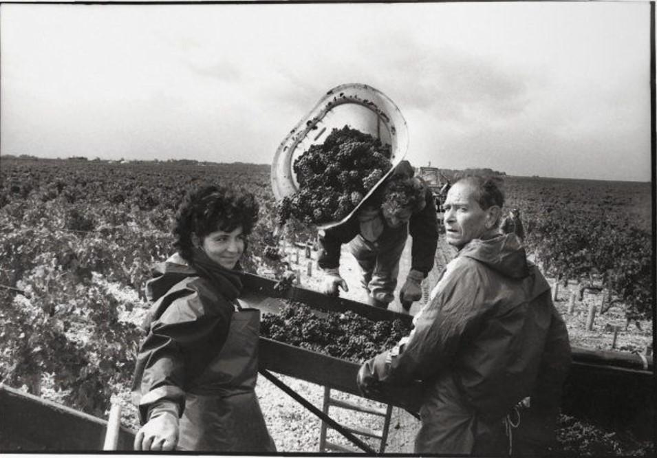 1945. Жиронда