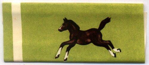 Лошадка (1).jpg