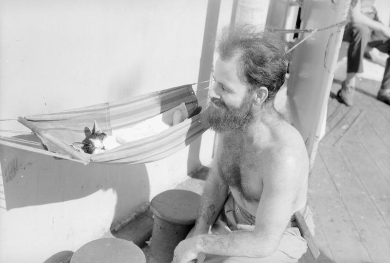 Sailmaker JW BRIGHT, of Kraaifointein, Cape Province, South Africa, has made a miniature hammock for his cat Trinco. Before the attack on Surabaya. may 1944 on board HMS Renown with the Eastern Fleet.