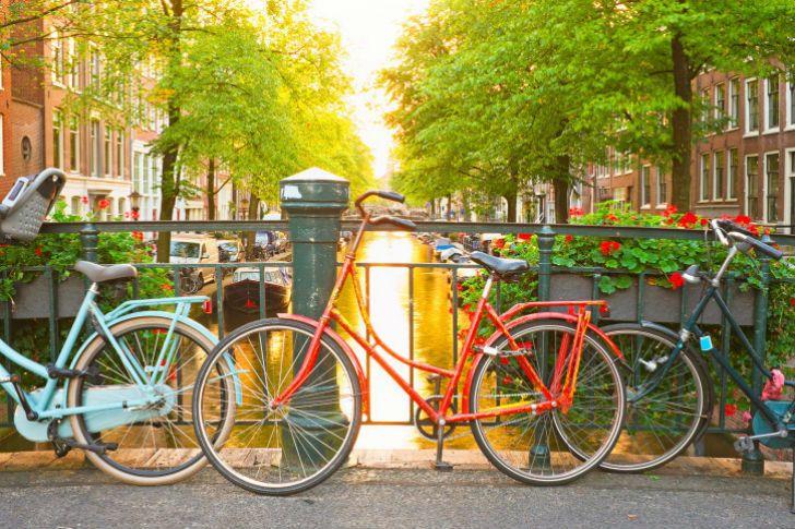 Но вы никак не можете выбрать, какое же время года вы больше всего любите в Нидерландах.
