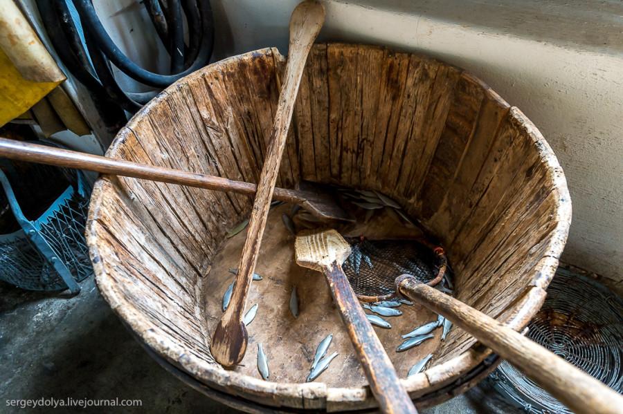 2. Так как сардины гораздо привлекательнее для покупателей, но живут в более теплых водах и рядом с