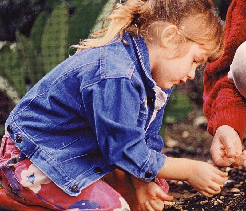 7. Помогут в выращивании растений Танины являются прекраснейшим удобрением, и потому чайный настой б