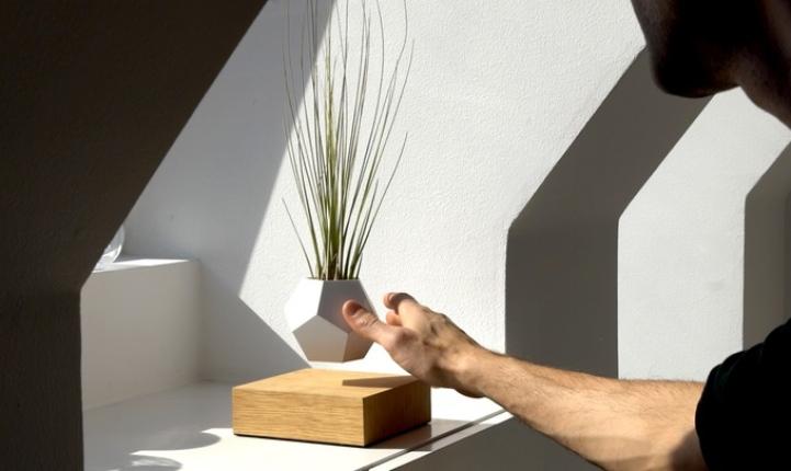 Инновационные цветочные горшки позволяют устроить в доме «летающий сад»
