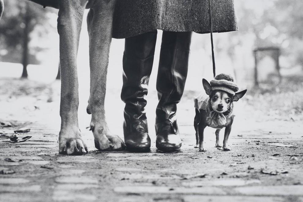 Шривпорт, штат Луизина, 1962 год.