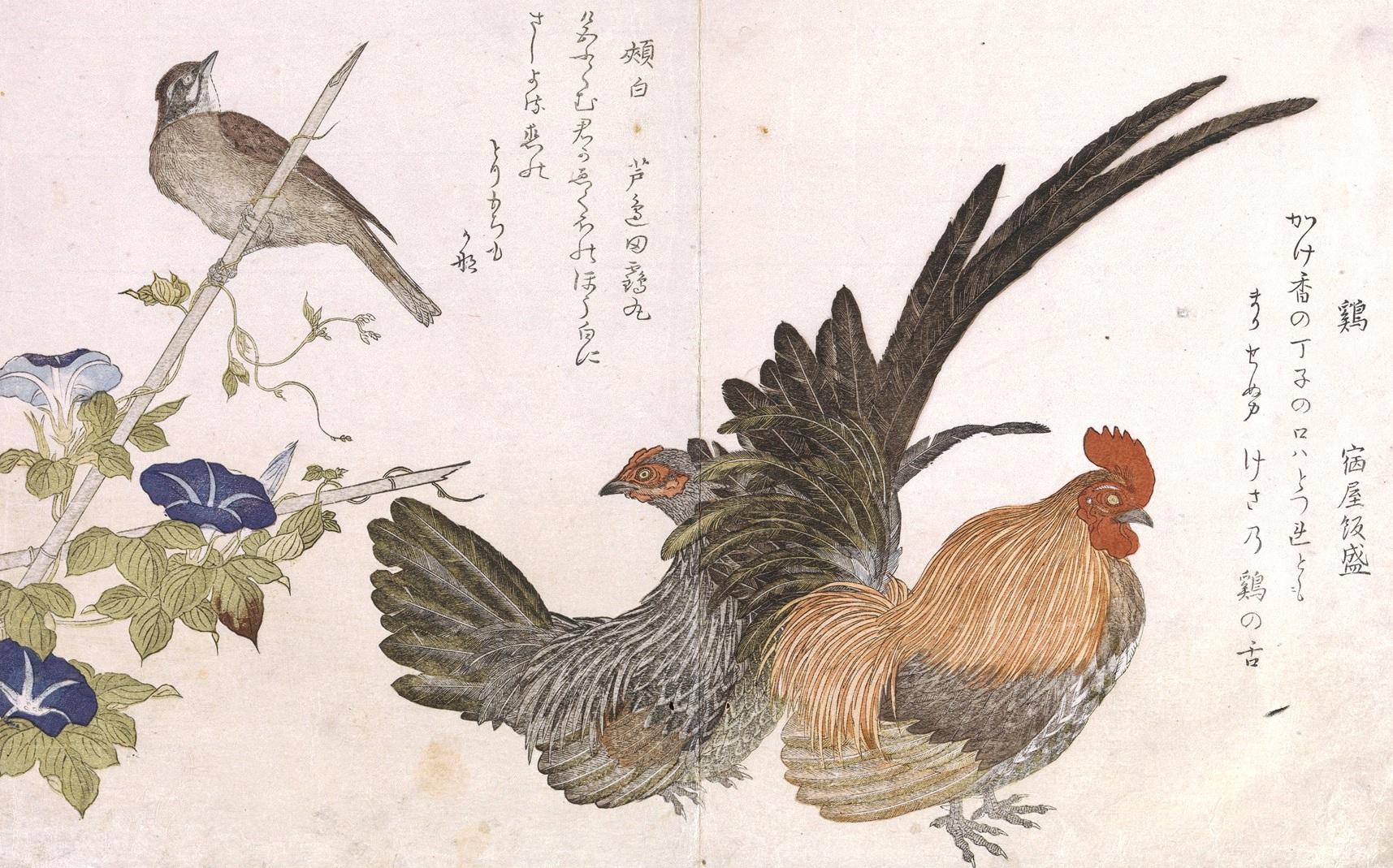 петух курица, японская живопись