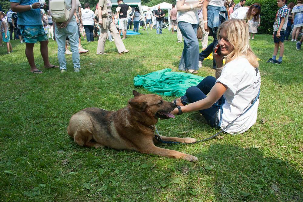 Всем по собаке в Новодевичьем парке