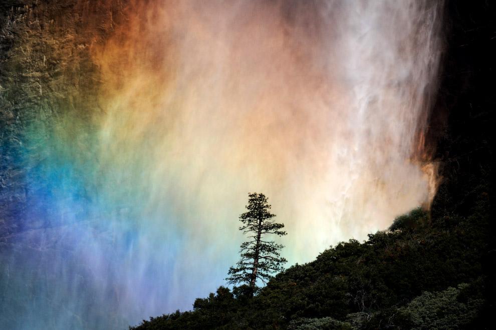 №5. Водопад Анхель, Венесуэла Анхель — самый высокий водопад в мире! Высота Анхеля — 979 метров