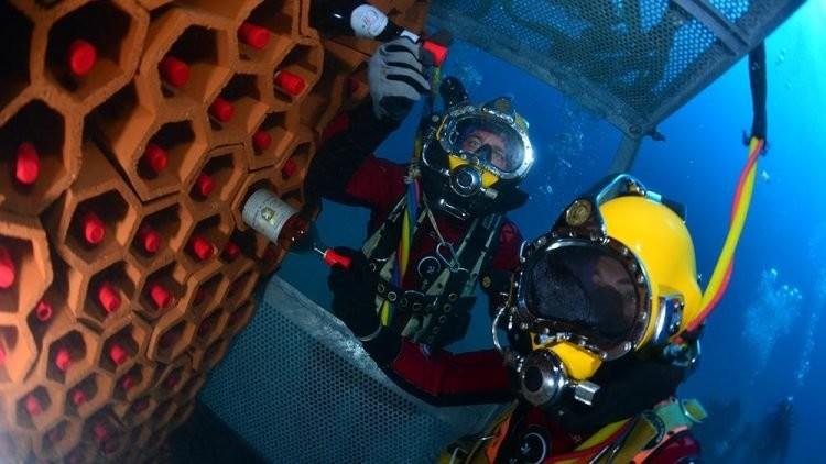 Подводный погреб и как правильно хранить вино (20 фото)