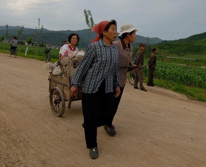 3. Первое знакомство с идеями чучхе начинается на корейской границе. Приезжие обыскиваются с редким
