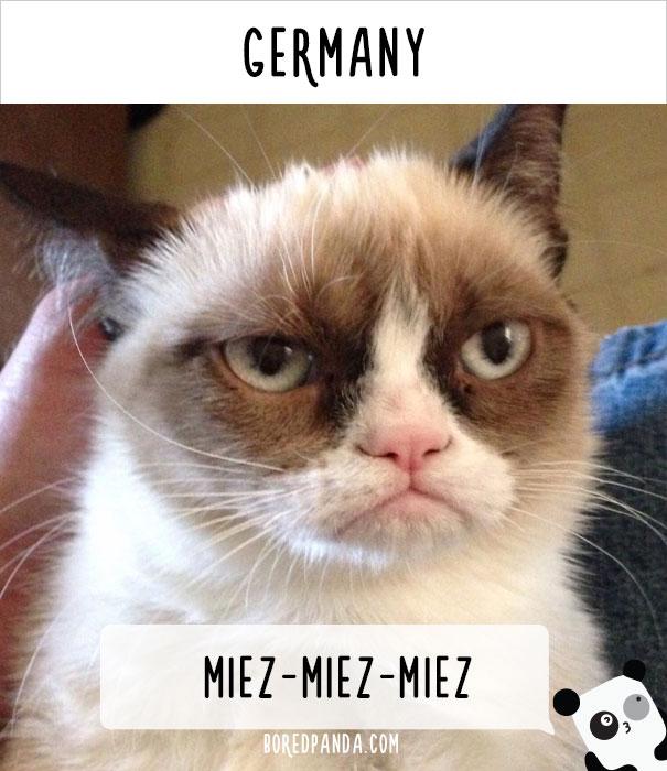 Германия — миц-миц-миц.