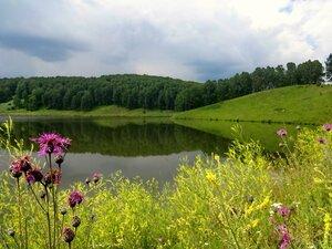 Михайловские  пейзажи