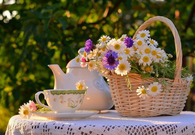 Душистый чай по чашкам разливайте!