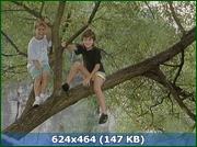 http//img-fotki.yandex.ru/get/1531/170664692.58/0_159535_33e0b19f_orig.png