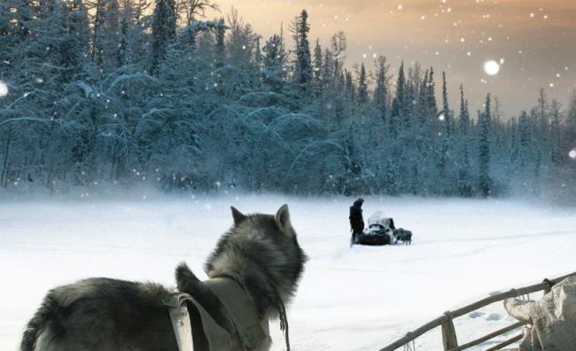 Суровая сибирская природа, не тронутая человеком, величественная река Енисей и маленький поселок
