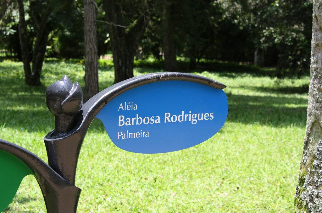 Ботанический сад Рио-де-Жанейро