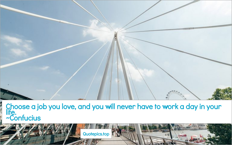 Choose a job you love, and you will never have to work a day in your life. ~Confucius