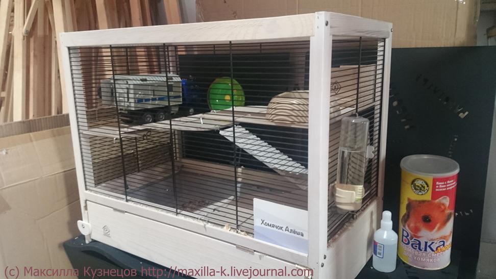Клетка для хомячка Алеши