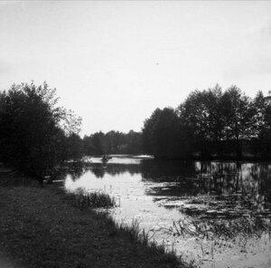 1904. Томилино. Вид в другую сторону против солнца