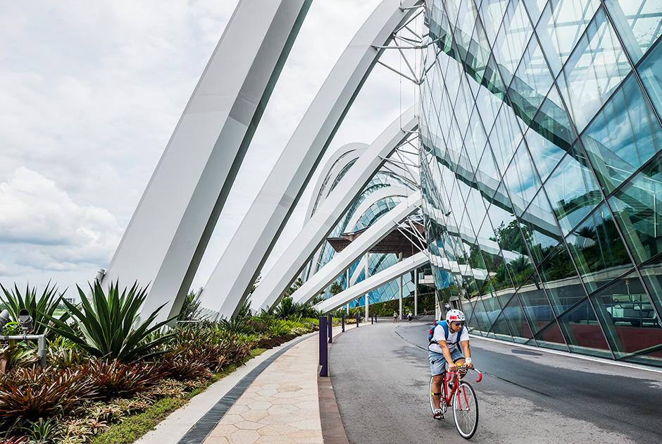 Сингапур: как живется в стране, признанной лучшей для иностранцев 0 145d73 a9bed1a6 orig