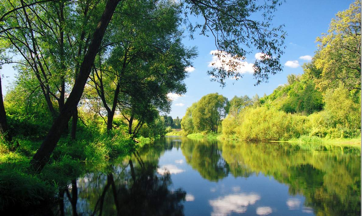 реки московской области схема