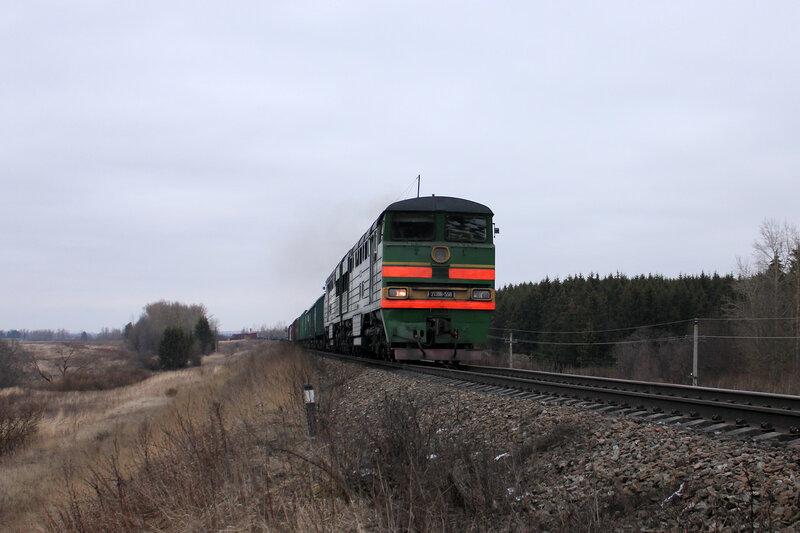 2ТЭ116-558 на перегоне Шубино - Новосокольники