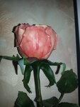 Галерея работ из полимерной глины - Страница 2 0_104d24_fb846cb_S