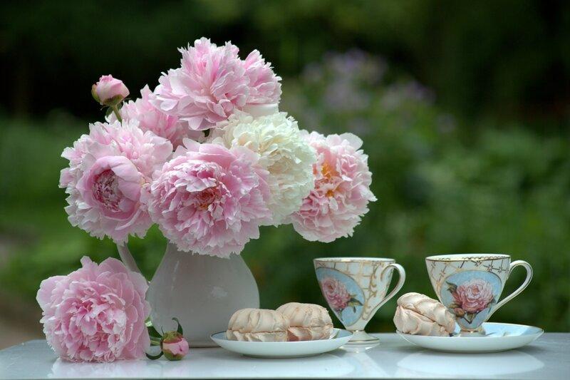 Июньский чай