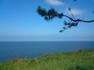 Берег озера Ильмень в Новгородской области