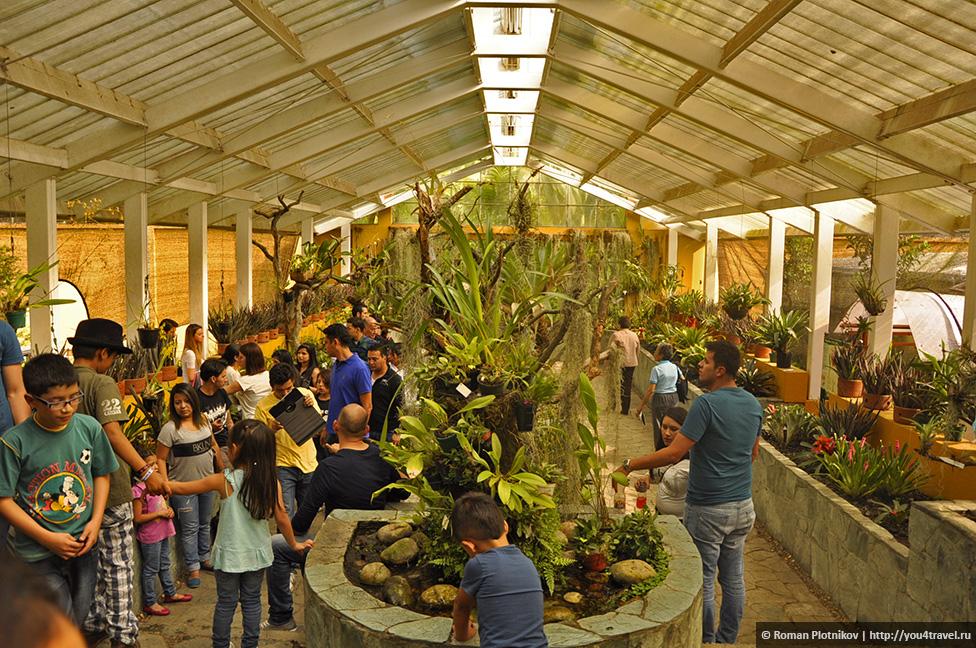 0 1919c1 4ba0ba60 orig День 212 213. Прощай, Колумбия! Ботанический сад в Боготе